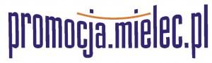 logo promocja nieprzdezr