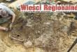 """""""Wieści Regionalne"""" nr 8/16(326) i """"Magazyn Prasowy Strefa"""" nr 8(409) z 31 VIII 2016 r."""