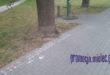 Nowa reklama chodnikowa