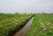 Europoseł Tomasz Poręba skutecznie interweniuje w sprawie poprawy bezpieczeństwa w rejonie obwałowania rzeki Wisłoka